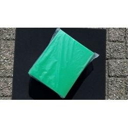 Filterspons Biotec 5.1 10.1 groen
